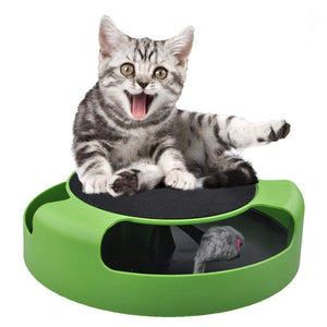 Catch Mouse Interactive Cat Toy