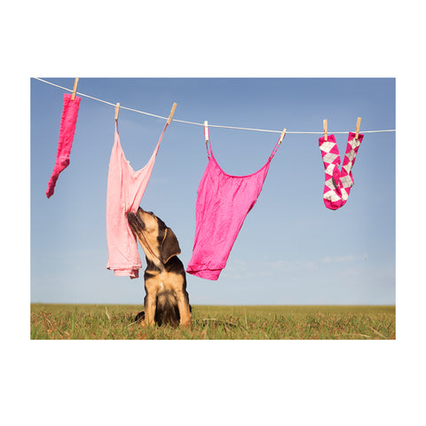 Note Cards- Laundry Day