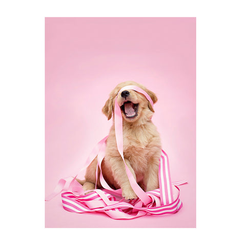 Note Cards- Golden Retriever