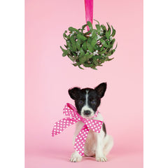 Holiday- Mistletoe Puppy