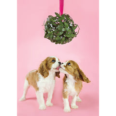 Holiday- Mistletoe Cavaliers
