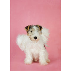 Holiday- Angel Wire Fox Terrier