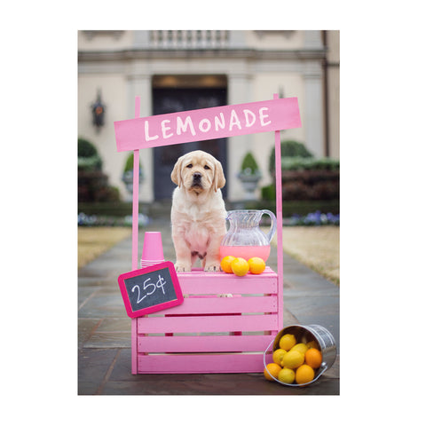 Note Cards- Lemonade Stand