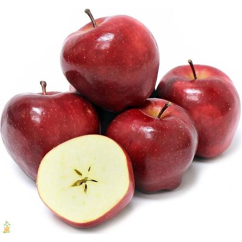 Red Delicious Apples 1Kg - Marmara Halal Meats