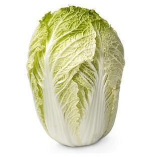 Chinese Wombok Cabbage