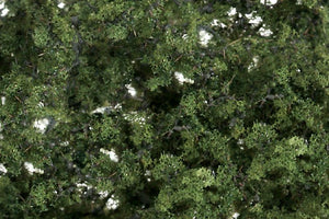 Fine Leaf Foliage Medium Green