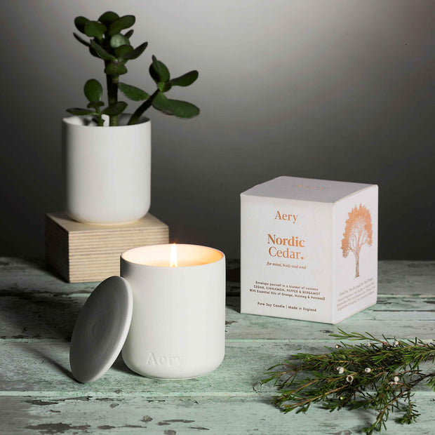 Nordic Cedar Candle - White Clay Pot