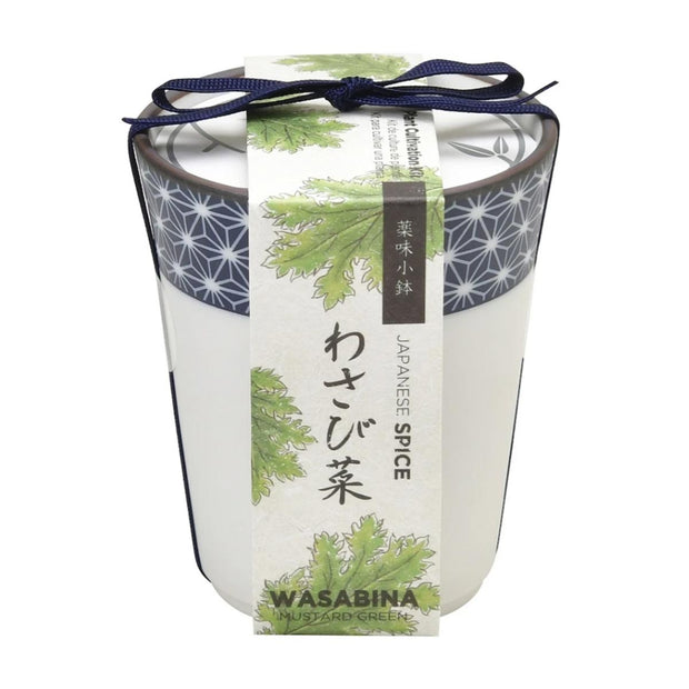 Yakumi - Japanese Spice Growing Kits