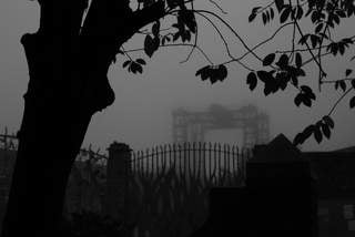Creekside Crane in the Fog, Deptford