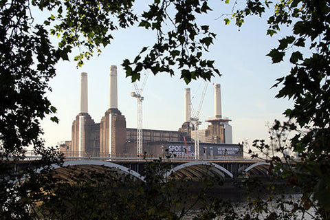 Battersea Spot the Difference colour