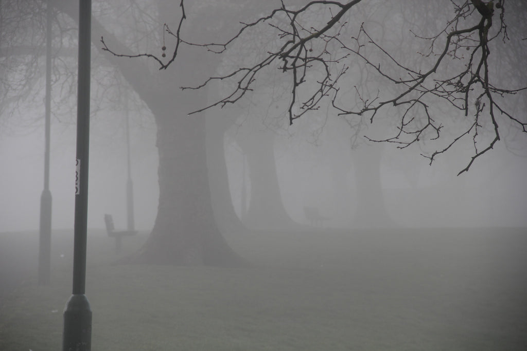 Hilly fields in the fog Landscape