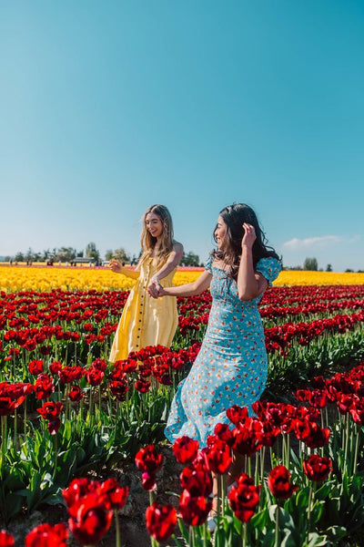 Two women in a red tulip flower field wearing blue and yellow dress