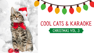 Cool Cats & Karaoke [Christmas Vol. 3] Crowd Breaker Game