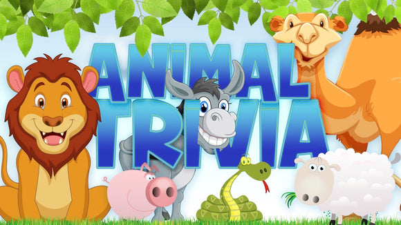 Animal Trivia On Screen Game