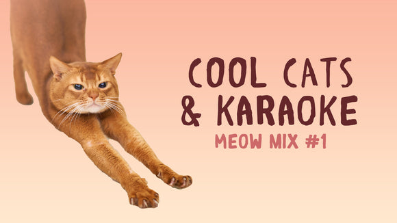 Cool Cats & Karaoke [Meow Mix Edition] Crowd Breaker Game
