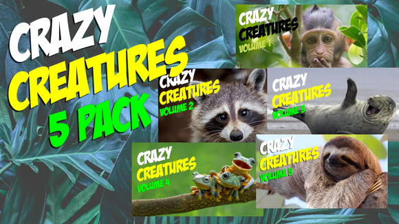 Crazy Creatures [5 Pack] On Screen Game