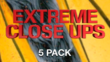 Extreme Close Ups [5 Pack] Crowd Breaker Game
