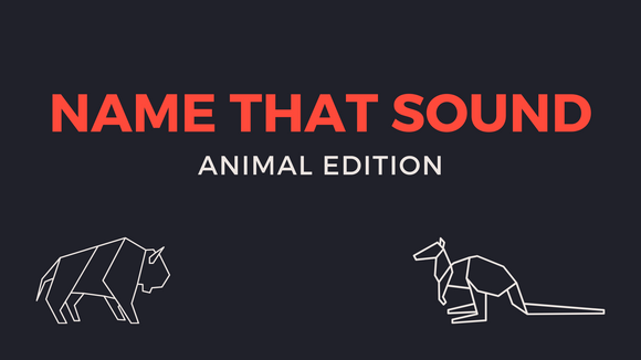 Name That Sound [Animal Edition] Crowd Breaker Video