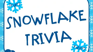 Snowflake Trivia On Screen Game