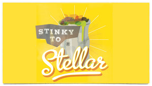 Stinky to Stellar Preteen Teaching Series
