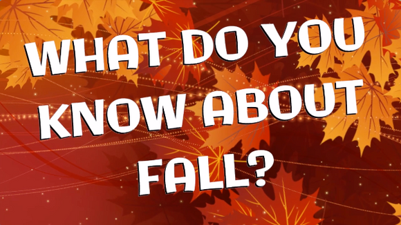 What Do You Know About Fall? Countdown Video