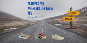 Trainers on the road