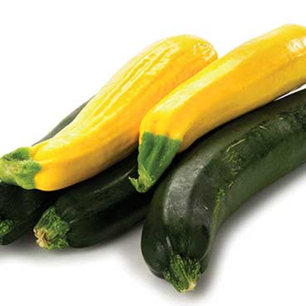 Zucchini - Green & Yellow (5 unit)