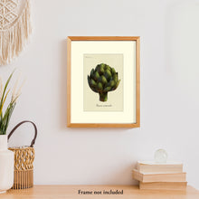 Load image into Gallery viewer, Art prints for sale-Realistic rendering of an artichoke