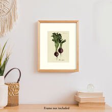 Load image into Gallery viewer, Beets