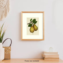 Load image into Gallery viewer, Pears