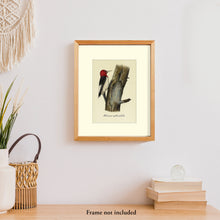 Load image into Gallery viewer, Art prints for sale-Traditional rendering of a red-headed woodpecker on a dead tree looking for food