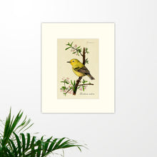 Load image into Gallery viewer, Art prints for sale-Traditional rendering of a yellow warbler perched on a branch with spring blossoms