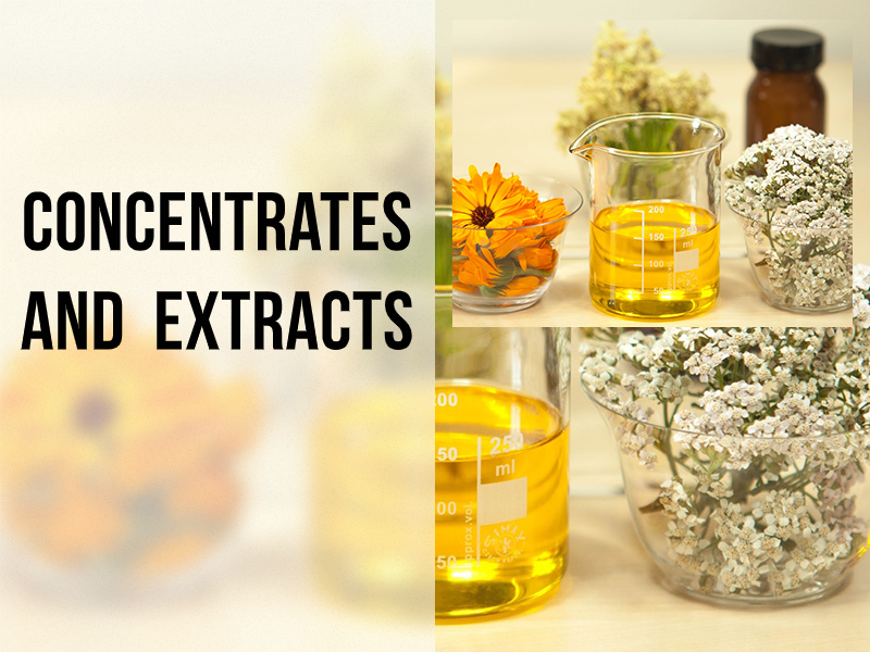 What are the Types of Cannabis Concentrates and Extracts