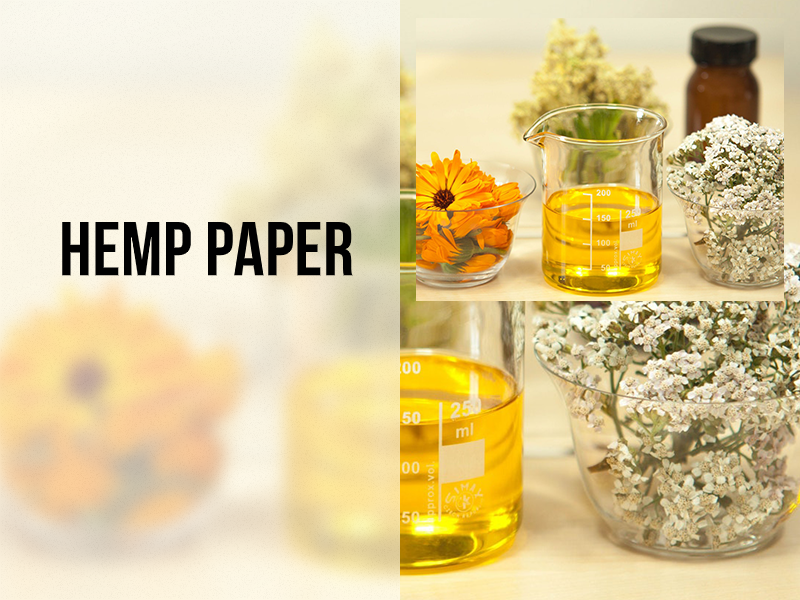 Hemp Paper and Traditional Paper compared