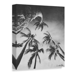 Swaying Palms (BW)