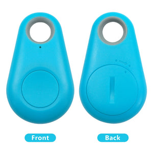 The GPS Pet Tracker