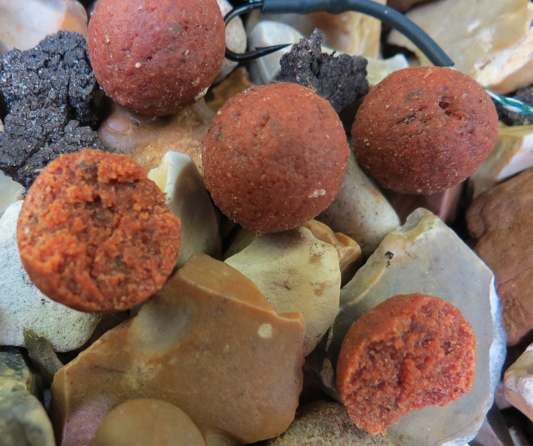 Krill Boilies