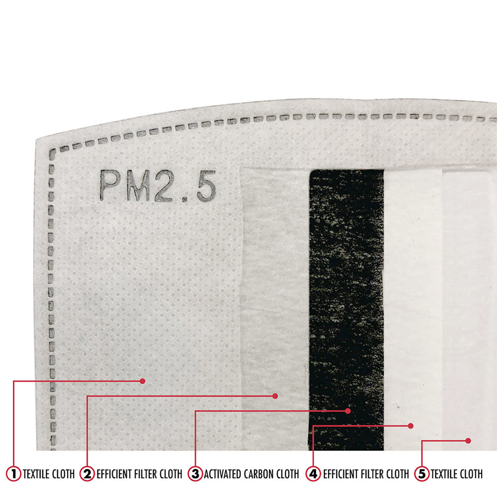 PM2.5 Filters (10-Pack)