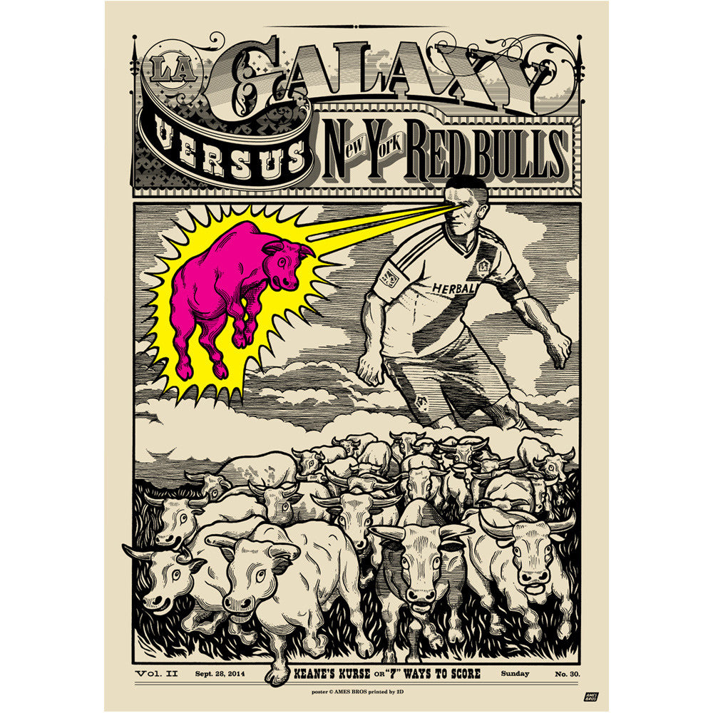 LA Galaxy vs New York Red Bulls Poster