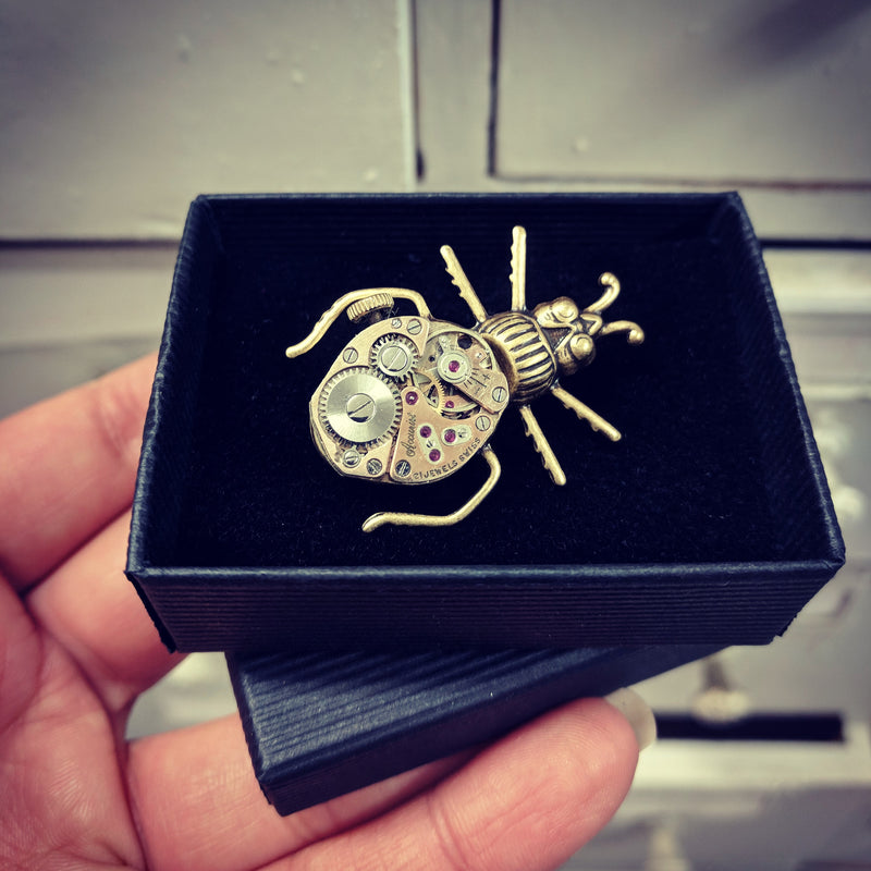 products/Gold_Beetle_Pin_Boxed.jpg