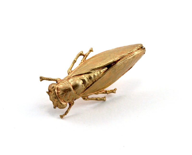 products/cicada-pin-00.jpg