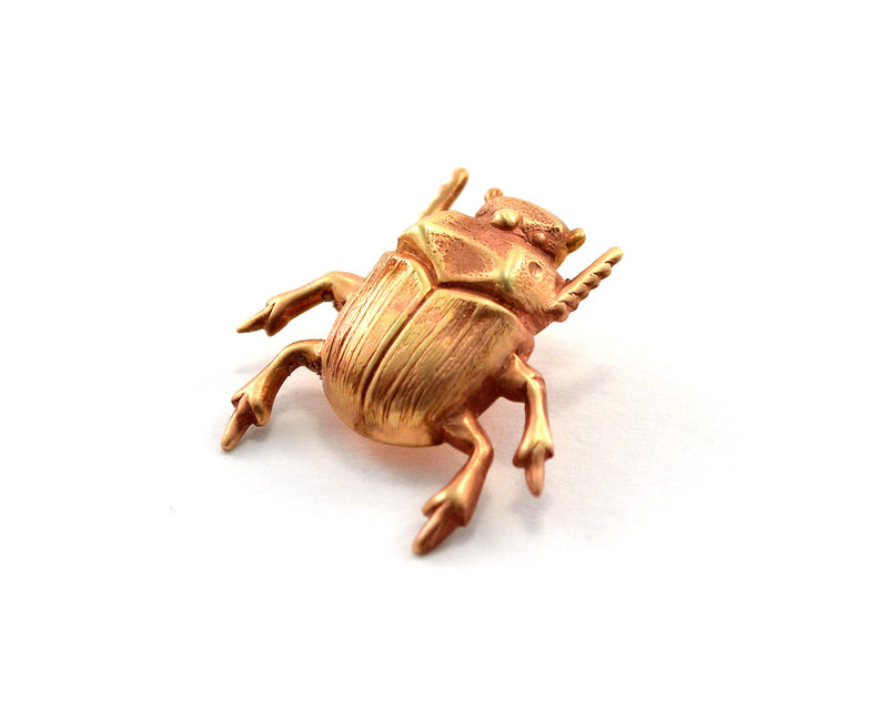 products/scarab-pin-beetle-bug-wedding-favours-00.jpg