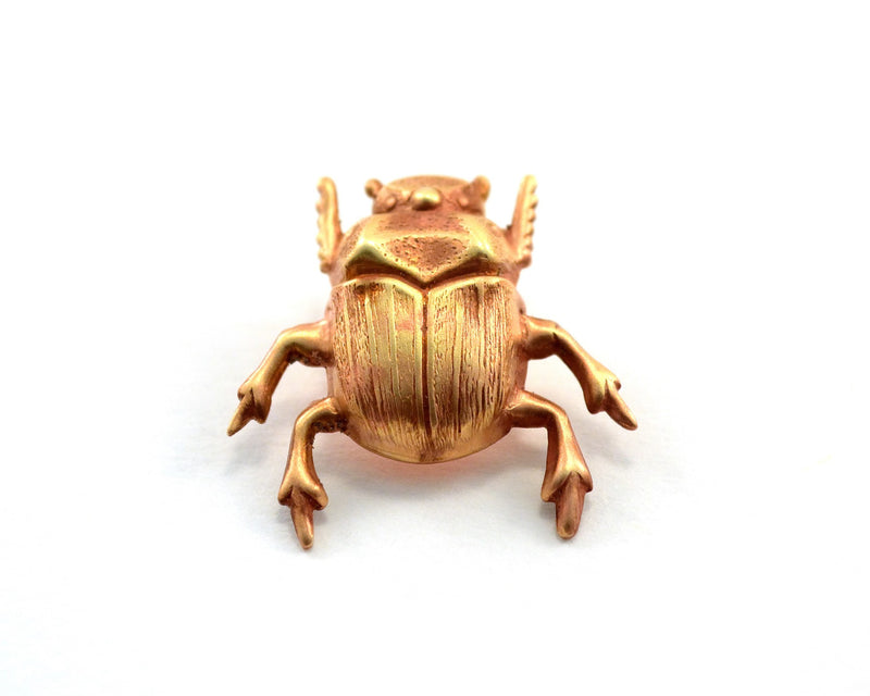 products/scarab-pin-beetle-bug-wedding-favours-01.jpg
