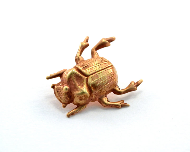 products/scarab-pin-beetle-bug-wedding-favours-05.jpg