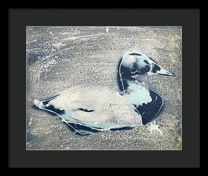 Chesapeake Decoy VIII - Framed Print