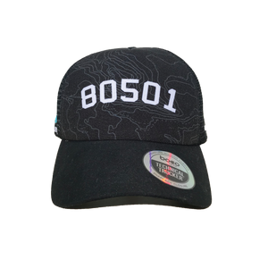 80501 Technical Trucker