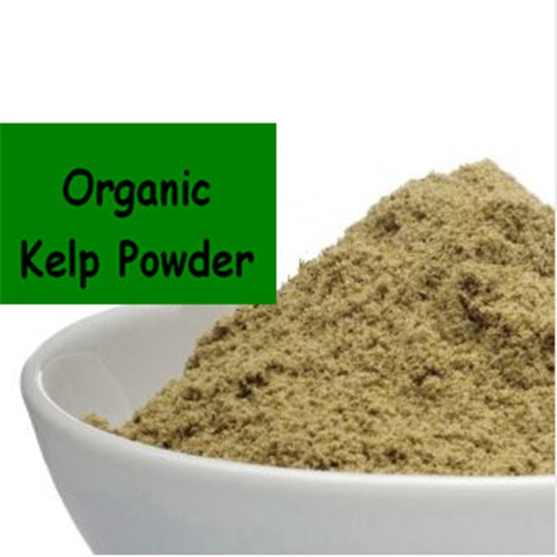 best organic kelp powder