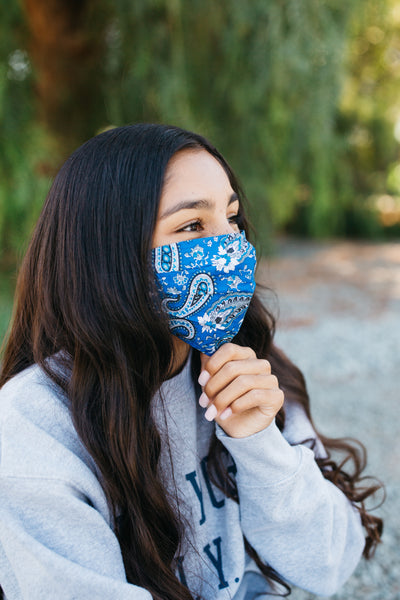 French Paisley Face Mask