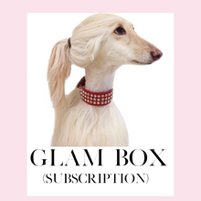 Load image into Gallery viewer, Glam Box Subscription - Bark Fifth Avenue