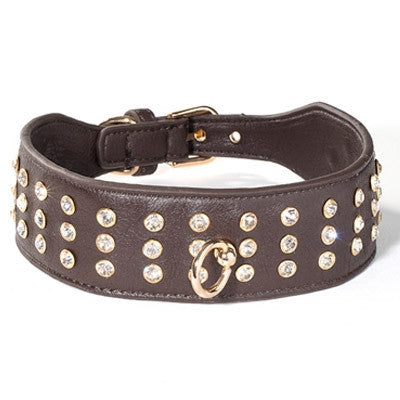 Bad Dog Collection Collars - Bark Fifth Avenue